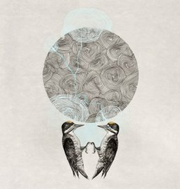 Kirsten Furlong - Moving through the wilderness